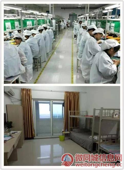 电子厂高价小时工240/天